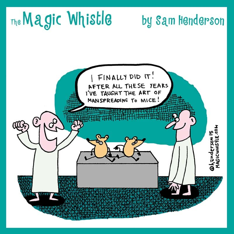 the magic whistle by sam henderson � wow cool