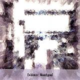"""Evidence - Moodspool 7"""""""